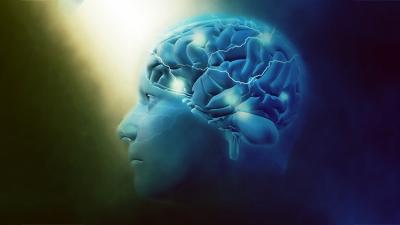 Cientistas descobrem um universo multidimensional em nosso cérebro (VíDEO)